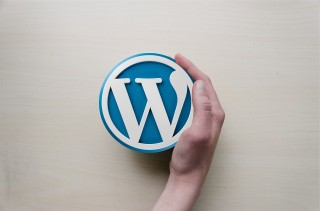 Indispensable WordPress Plug-Ins